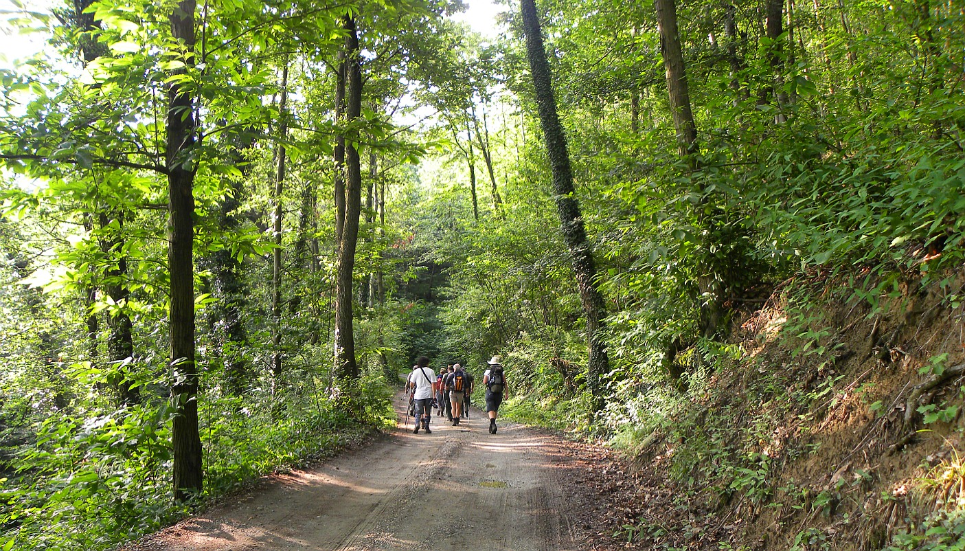 Camminata sui sentieri di Montaldo Torinese